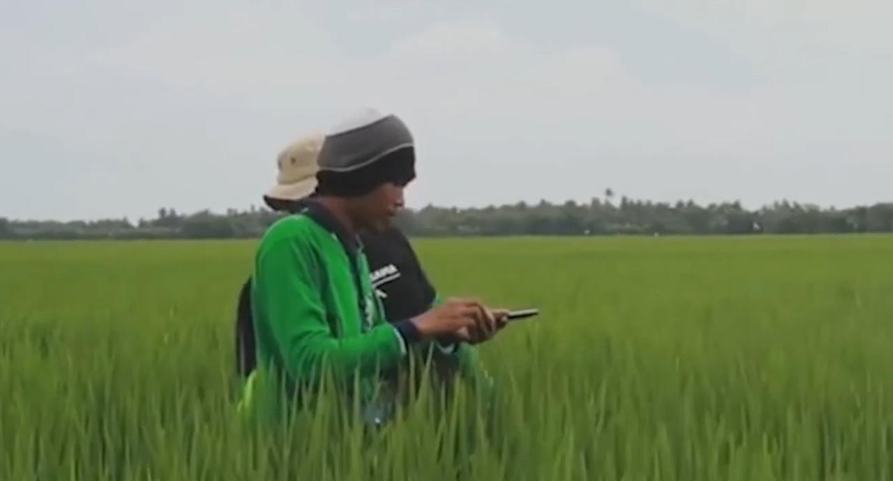 Wujudkan Satu Data Untuk Peningkatan Kesejahteraan Petani