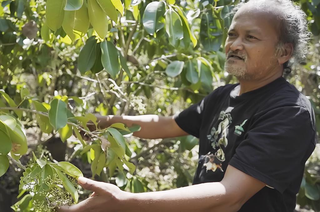 Rumah Edukasi Kampung Biru Deun di Lumajang Berikan Pengetahuan tentang Alam